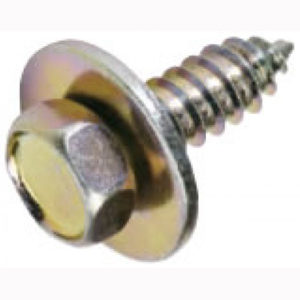 Champion 14G x 3/4in Hex Head Self Tapping Screw - 50pk