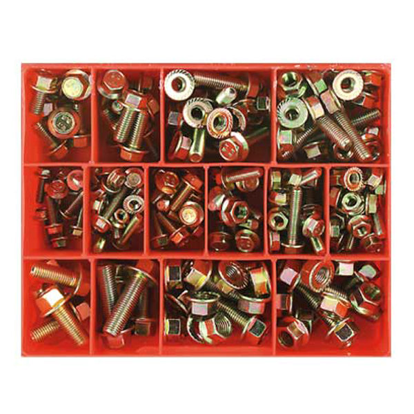 202pc Flange Head Metric Bolt & Nut Assortment
