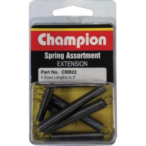 8pc Extension Spring Blister Assortment