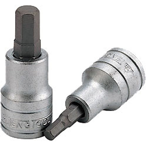 Teng 3/8in Dr. Hex Bit Socket 12mm