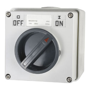 10A 1 Pole 250V Surface Switch Module IP66**