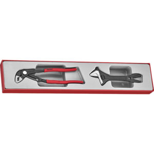 Teng 2pc Plier/Adjustable Wrench Set -TTX-Tray